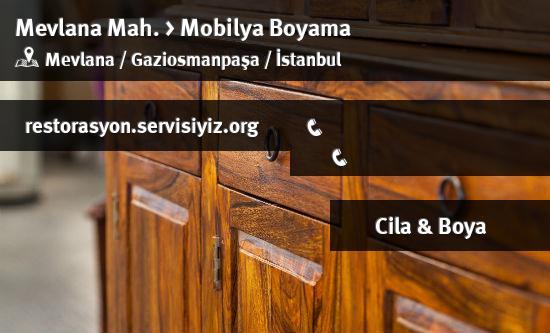 Gaziosmanpaşa Mevlana Mobilya Boyama Istanbul Restorasyon